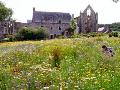 Bretagne_2007_63