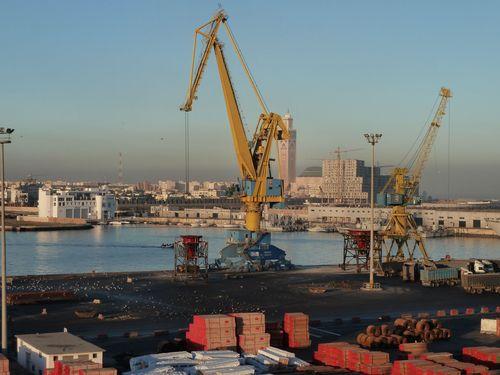 11 janvier 2011 (35) port de Casa