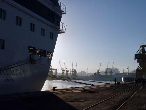 11 janvier 2011 (48) port de Casablanca matin